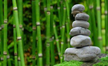 La ricchezza fa bene alla spiritualità? Io dico di sì. E ti spiego perché