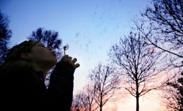 9 abitudini delle persone emotivamente resilienti